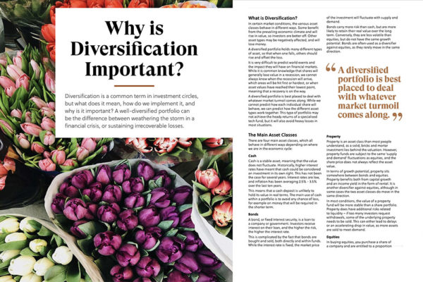 why-divisification-is-important